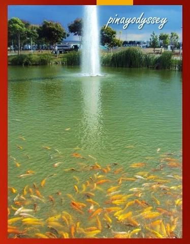Oooh.. a fountain!