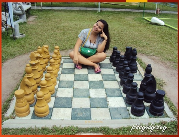 How about we play chess? Dama?