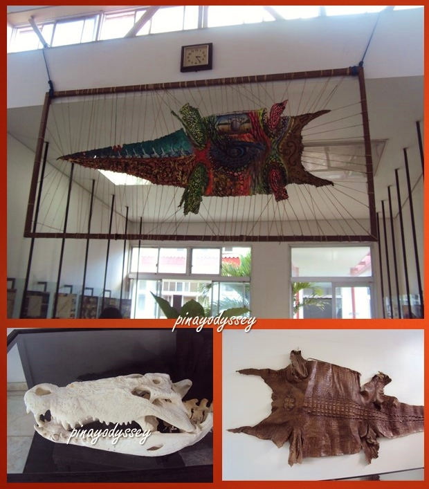 At the Crocodile Museum