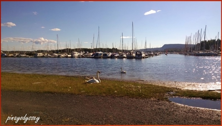 Blommenholm Båtforening