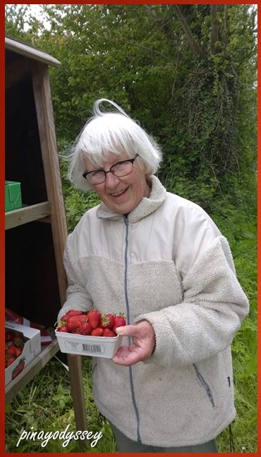 Grandma E and the precious strawberries