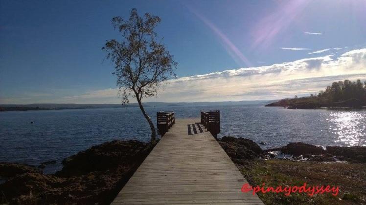 Fornebu beach
