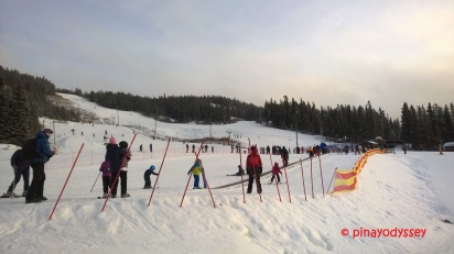 Valdres Alpinski Senter