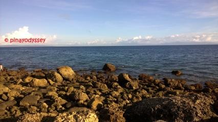 The rocky sea coasts
