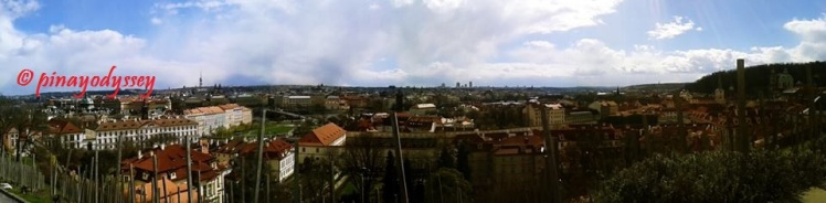A panorama of the city from the castle