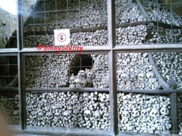 More pile of bones