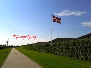 The road going home and the Danish flag