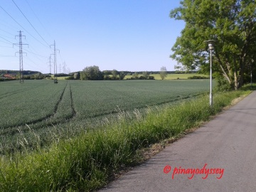 Jogging one fine morning