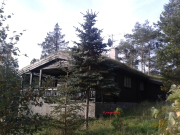 The beautiful Danish cabin