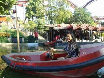 The Swan lake