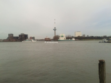 The river Maas/Meuse, with the Rotterdam city center on the other side