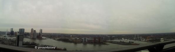 A panorama of Rotterdam