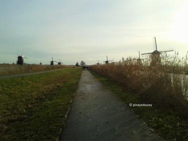 Kinderdijk narrow main road