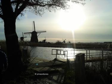 Beautiful Kinderdijk
