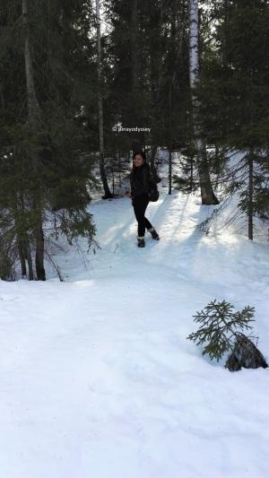 Hiking through the Norwegian woods