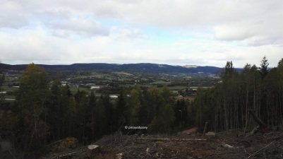 Drammenfjord, from the hills in Lier