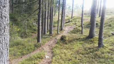 Hiking in Kjekstadmarka