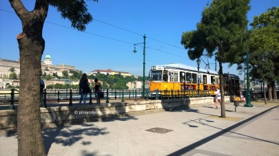 Otw to the Lion Fountain, the city tram