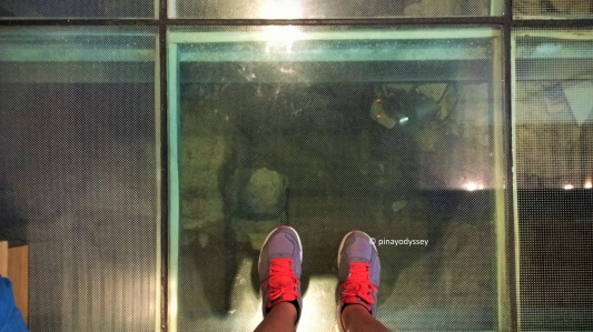 The glass-floor in the bathroom