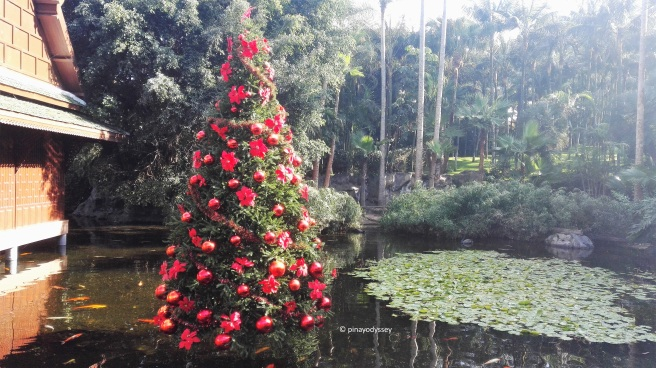 A Christmas tree in a pond!
