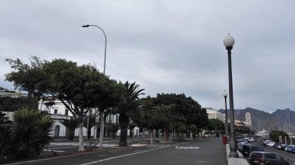 Avenida de la Constitucion