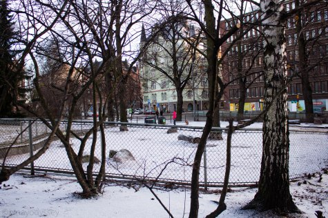 A dog park, located near the Uspenski Cathedral