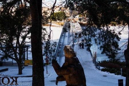 Welcome to Helsinki Zoo island!
