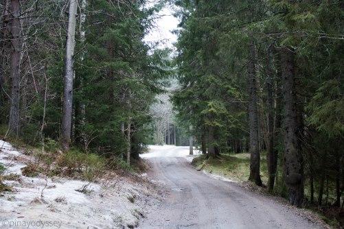 Konnerud-Drafnkollen route