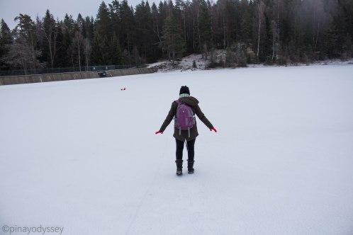 Frozen Blektjern