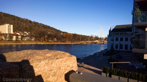 A scene from Drammenselva (river)