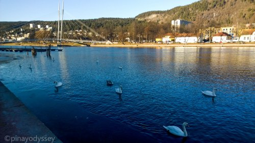 A scene from Drammenselva (river), with the Ypsilon bridge in the background