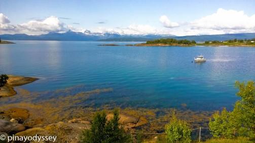 Ofotfjorden