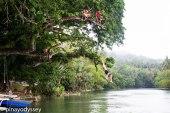 LOBOC RIVER - PHILIPPINES