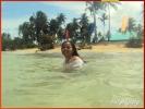 COWRIE ISLAND - PHILIPPINES