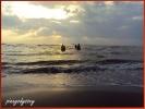 NAUJAN BEACH - PHILIPPINES
